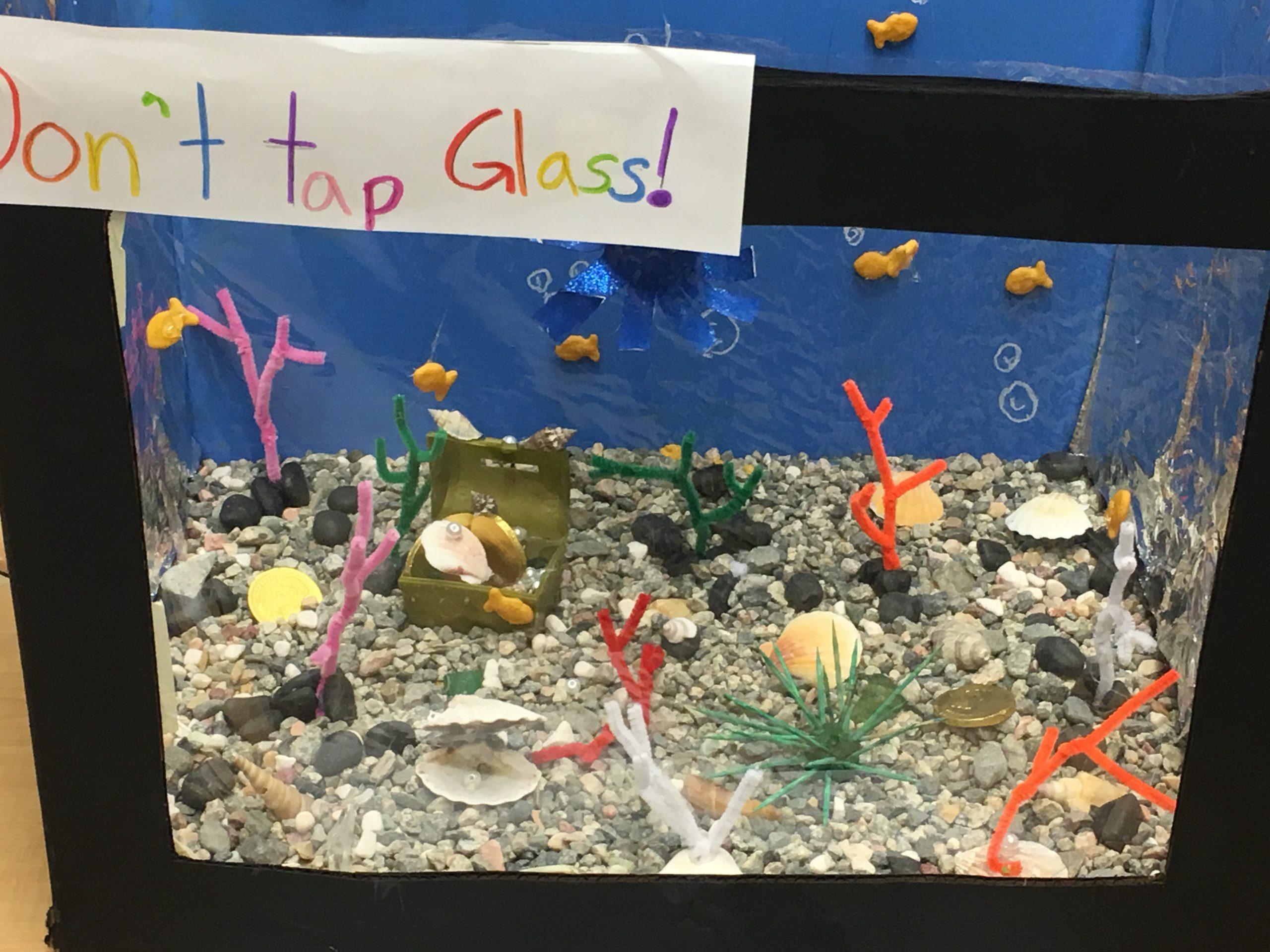 MMT fish tank